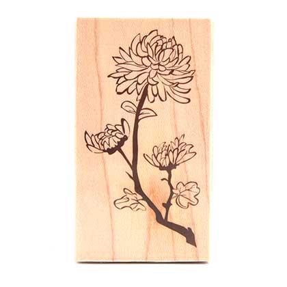 나무스탬프-국화꽃 [D26]