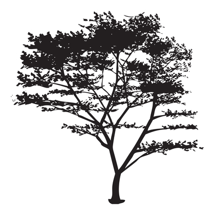 수지판 - 나무 8