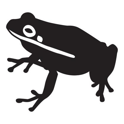수지판 - 개구리